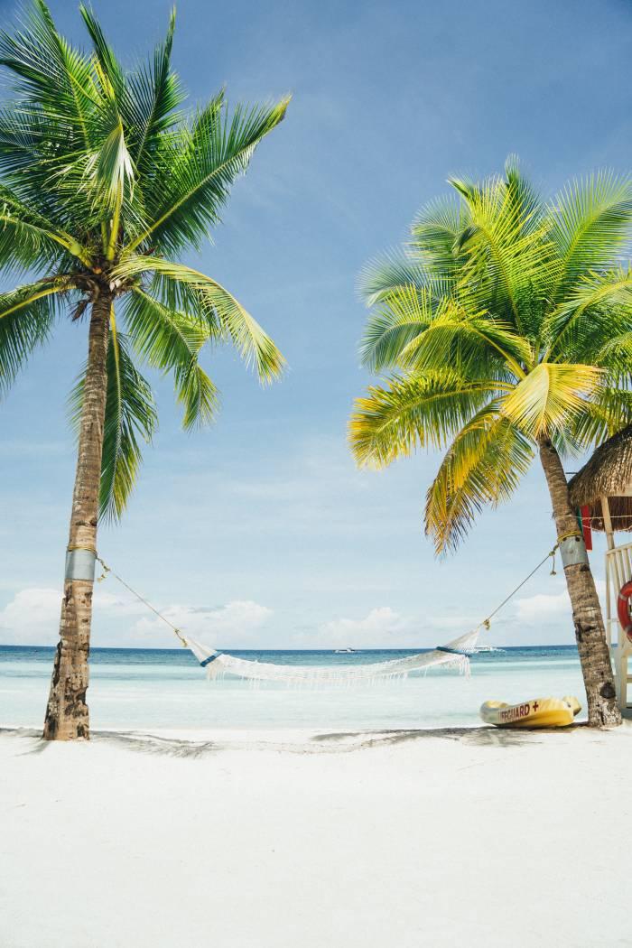 Sydenferie-palmer-varme-ferie-Apollo-rabattkoder